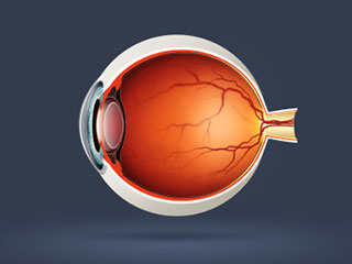 Ophthalmologist in Raleigh & Clinton, NC | Carolina Vision Center